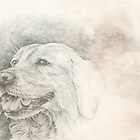 Chinese Zodiac - The Dog by KirstenOnRedB
