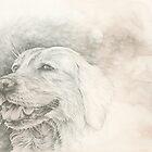 Chinese Zodiac - The Dog by KirstenOnRedB