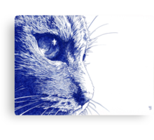 Close to the Tabby Canvas Print