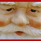 Gnome's  face by Jan Carlton