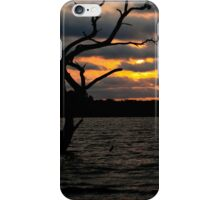 Creepy Tree in Water iPhone Case/Skin