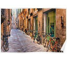 Lucca in September Poster
