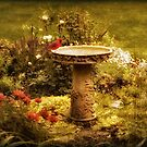 The Birdbath by Jessica Jenney