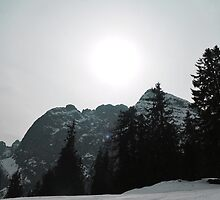 Austrian Alps by ak4e