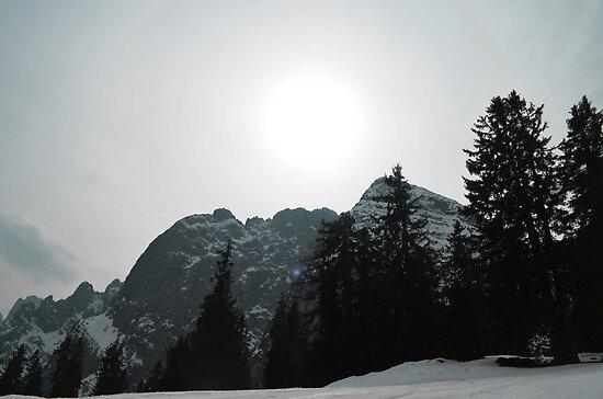 Austrian Alps by ak4e
