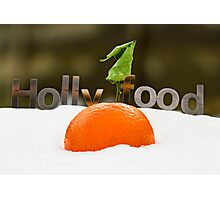 Holly Food Photographic Print