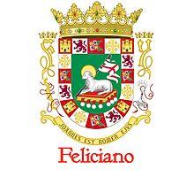 Feliciano Shield of Puerto Rico Photographic Print