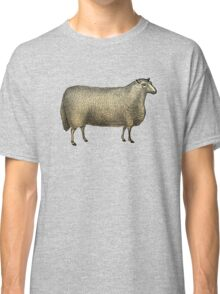 Vintage Sheep Illustration Classic T-Shirt