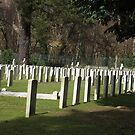 Commonwealth War Graves Site (part) by Andrew  Bailey