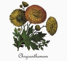 Vintage Chrysanthemums Botanical Baby Tee