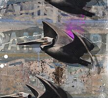 La Jolla Flying Pelicans by Artstudio61