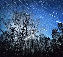 Alabama Night Sky by andrew nuckols