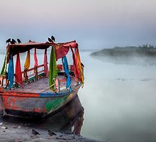 Colours in the mist by DaveBassett