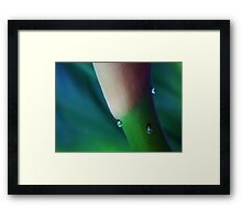 ©NS Blue On Drops IA Framed Print