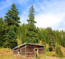 Lone Cabin - Aspen Colorado  by Jesse Diaz