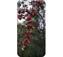 Little Red Berries iPhone Case/Skin