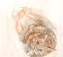 Japanese Bobtail Tabby Cat by KirstenOnRedB