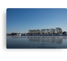 Seagull Convention on Thin Ice Canvas Print