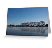 Seagull Convention on Thin Ice Greeting Card