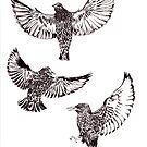 BIRDS 2 by Sally Barnett