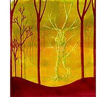 TREE SPIRIT Photographic Print