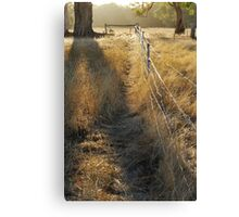 Highlight on Ills of a Short Span Canvas Print