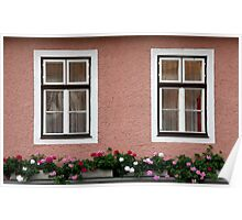 Double Windows And Geraniums Poster