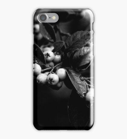 Cotoneaster Berries iPhone Case/Skin