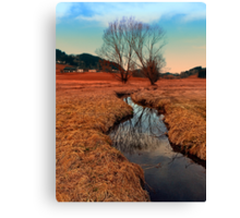 A stream, dry grass, reflections and trees | waterscape photography Canvas Print