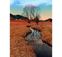 A stream, dry grass, reflections and trees | waterscape photography Photographic Print