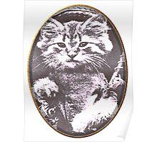 Cat gone fishin Poster