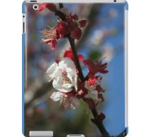 Sunlight Embracing Apricot Blossom iPad Case/Skin