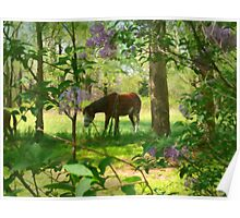 Summer in the Pasture Poster