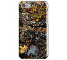 autumn ground reflection iPhone Case/Skin
