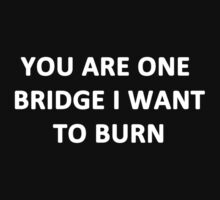 You Are One Bridge I Want to Burn by Chris  Bradshaw