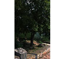 Under the Tree is a Burning Heart Photographic Print