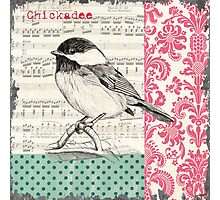 Vintage Songbird 2 Photographic Print