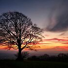 Hill Top Tree and Sunset by peteton