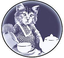 Kitten Tea Time Photographic Print