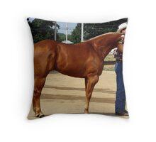 Palomino Halter Quarter Horse Throw Pillow