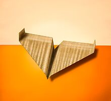 Paper Airplanes of Wood 8 by YoPedro