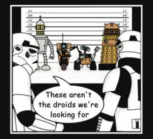 Not the droids... by Joeken