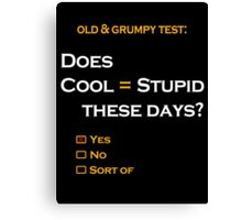 Cool=Stupid-Yes Canvas Print