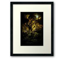 Night Fight Framed Print
