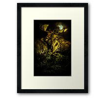 Night Fight Framed Print