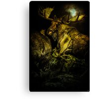Night Fight Canvas Print