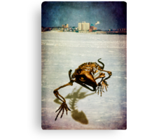 It Came From The Sea  Canvas Print