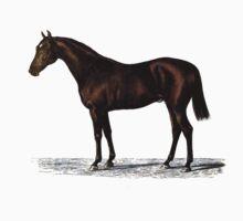 Vintage Thoroughbred Horse Kids Tee