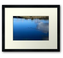 Ducks, Water and Reflections Framed Print