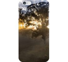 Autumn Wow iPhone Case/Skin